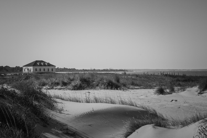 Dunes by Oksana Kemp