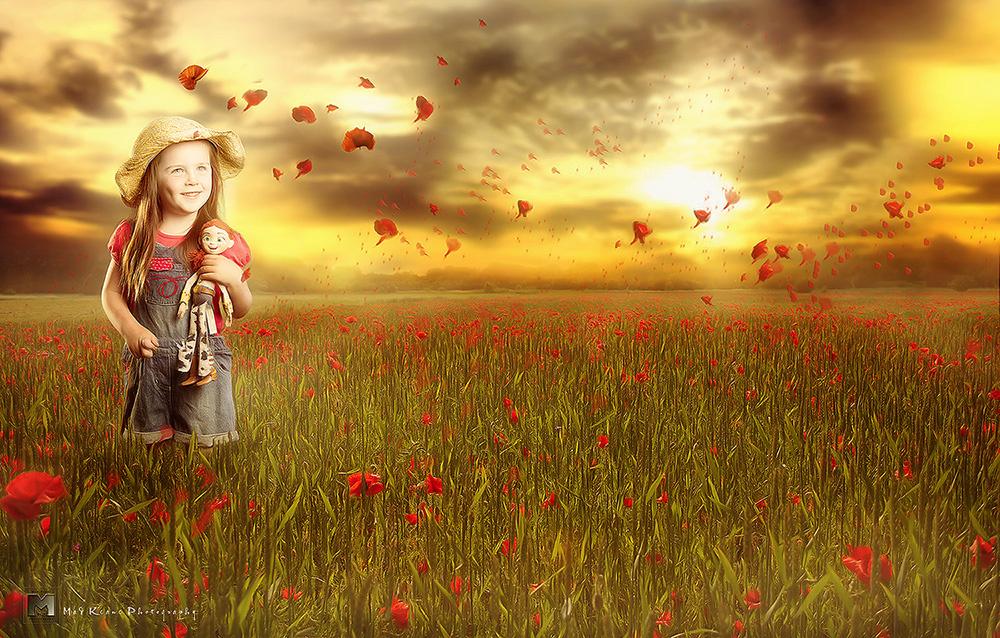 Poppy Dream by Andrew Keane