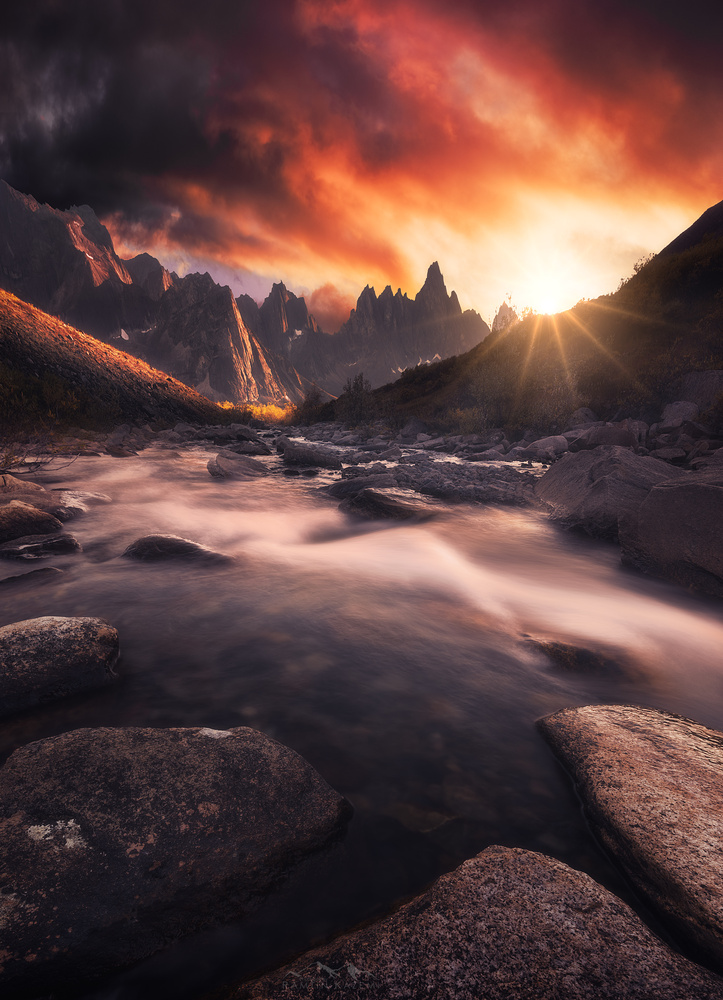 River of Life by Ramtin Kazemi
