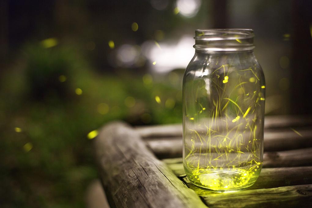 Jar of light by jon galione