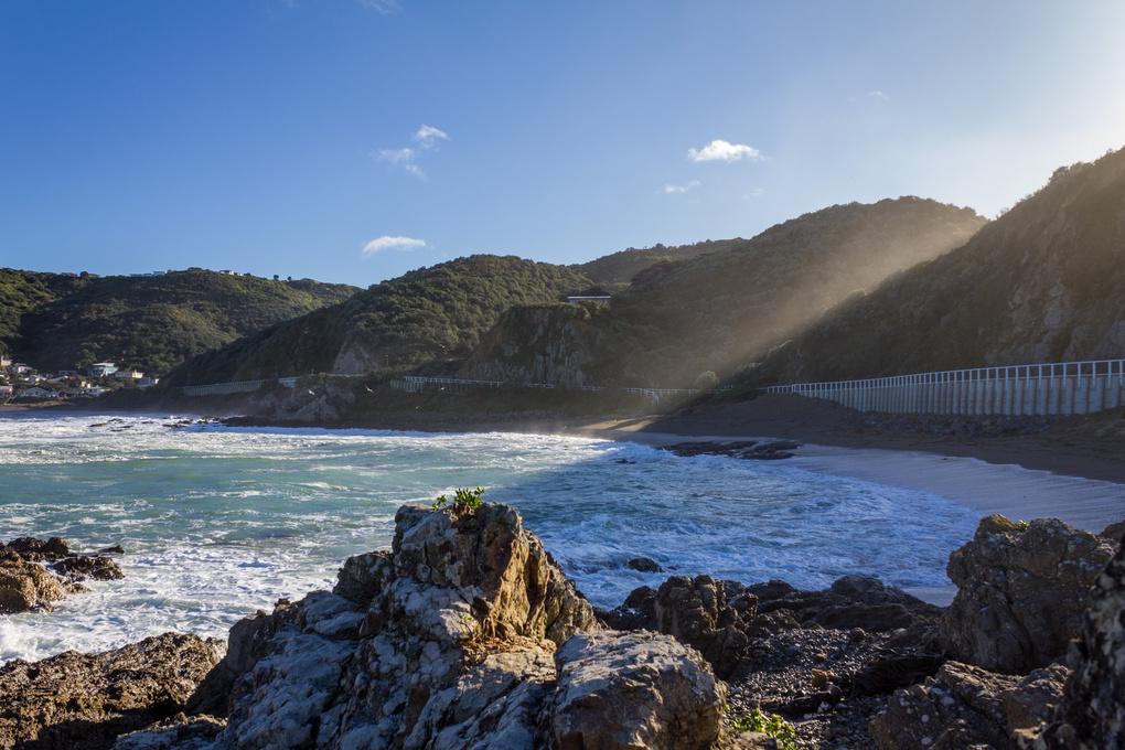 Wellington. by Will Stewart
