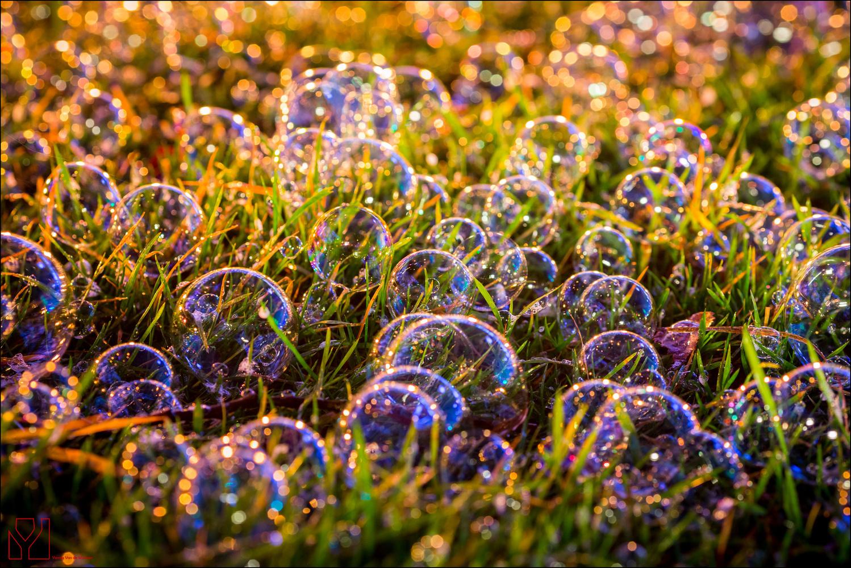 Soap Bubbles by Yannig Van de Wouwer
