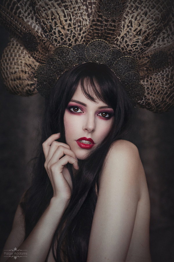 Elegant Curiosities by Paige Addams