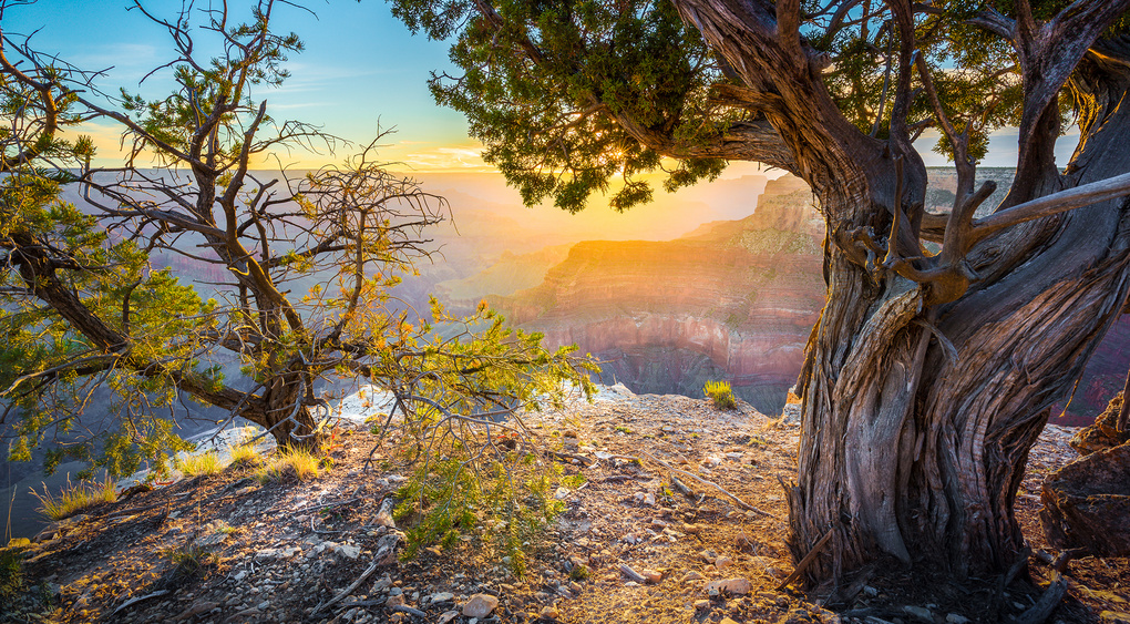 Grand Canyon sunrise HDR by Dmitry Abramov