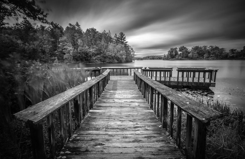 The Lake by Renato SIlvis