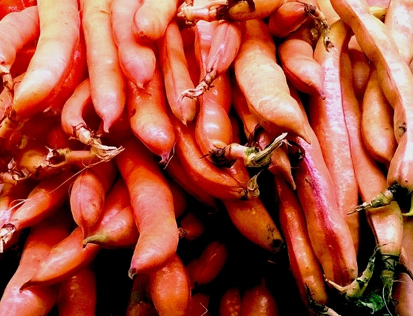 Red Beans by Walter Phillips