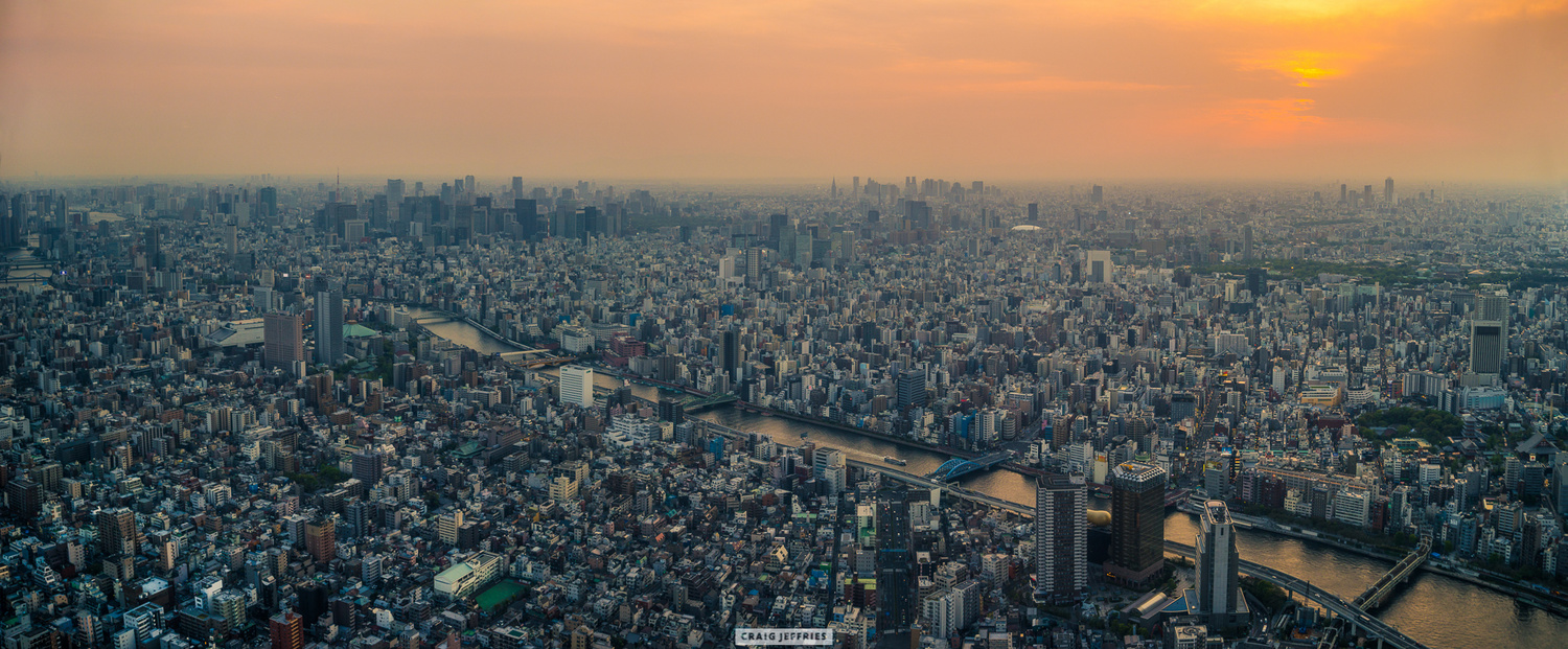 Tokyo from above by Craig Jeffries