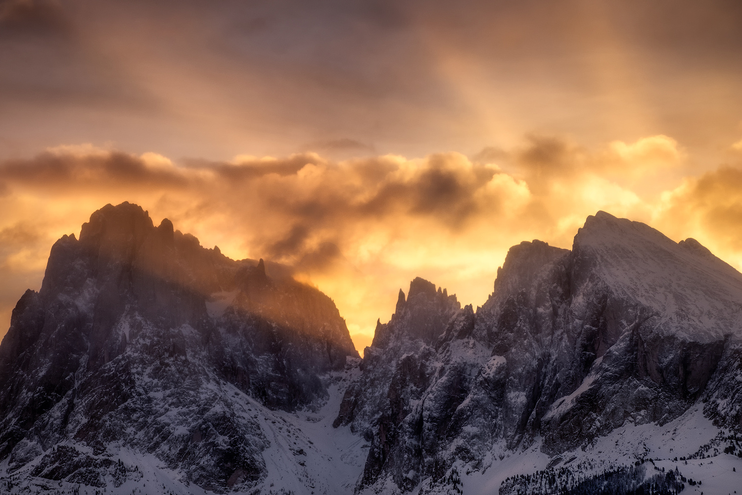 Morning Dawn by Andrea Re Depaolini