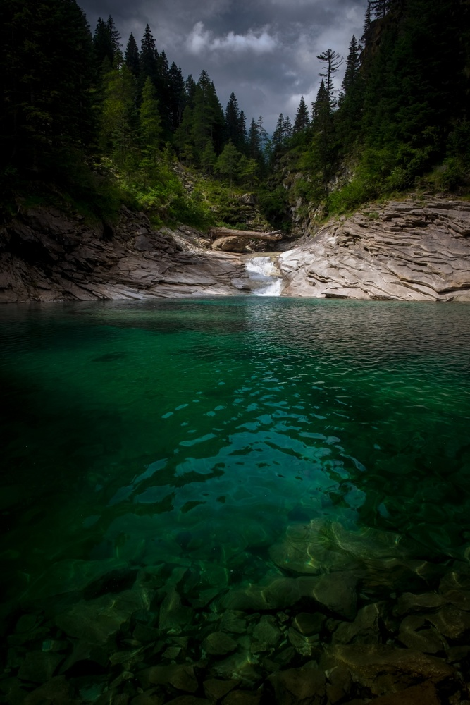 The Green V by Andrea Re Depaolini