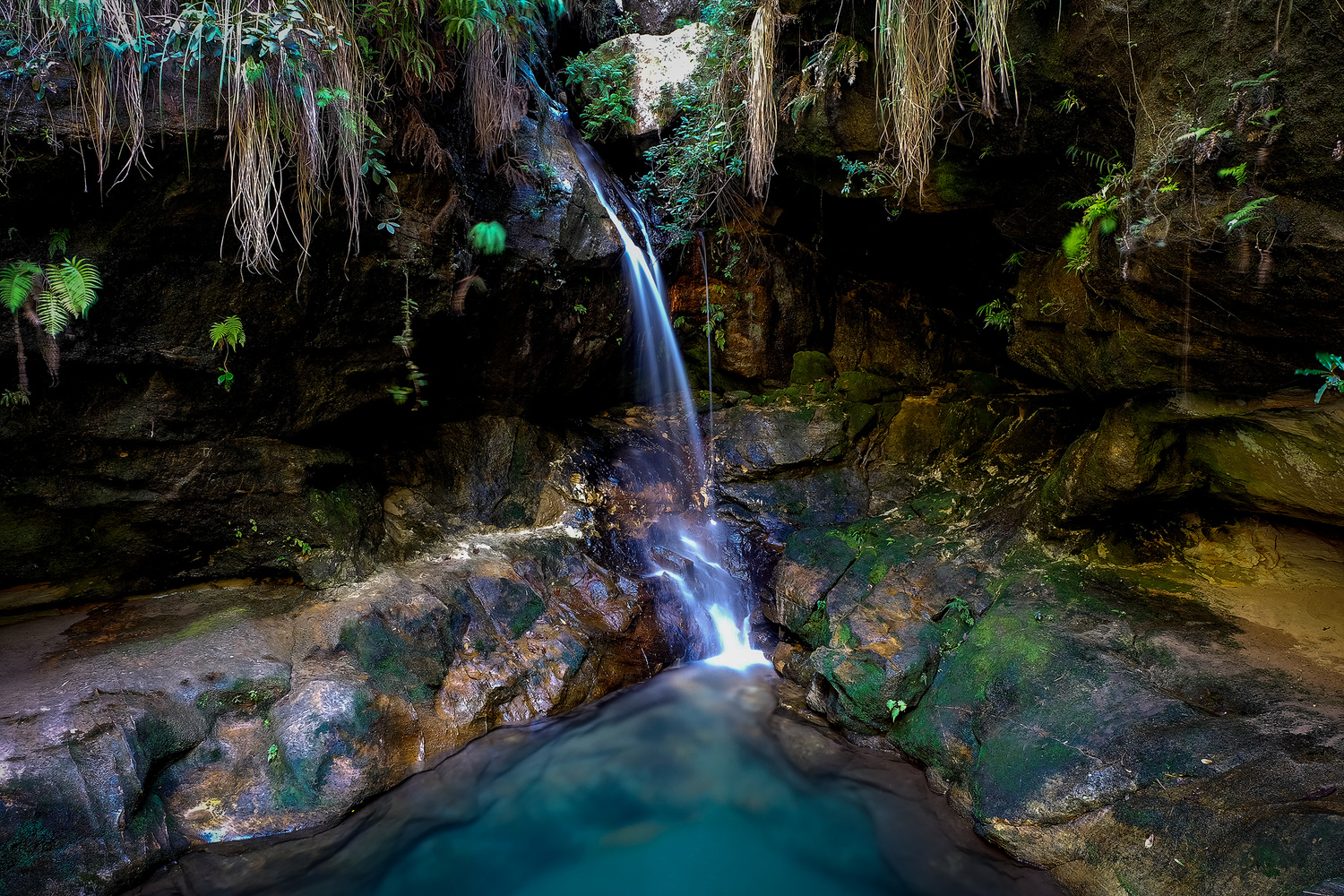 The Green Pool by Andrea Re Depaolini