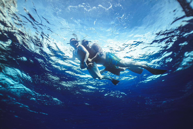Shark Dive Honeymoon Portrait by Pepper Francis