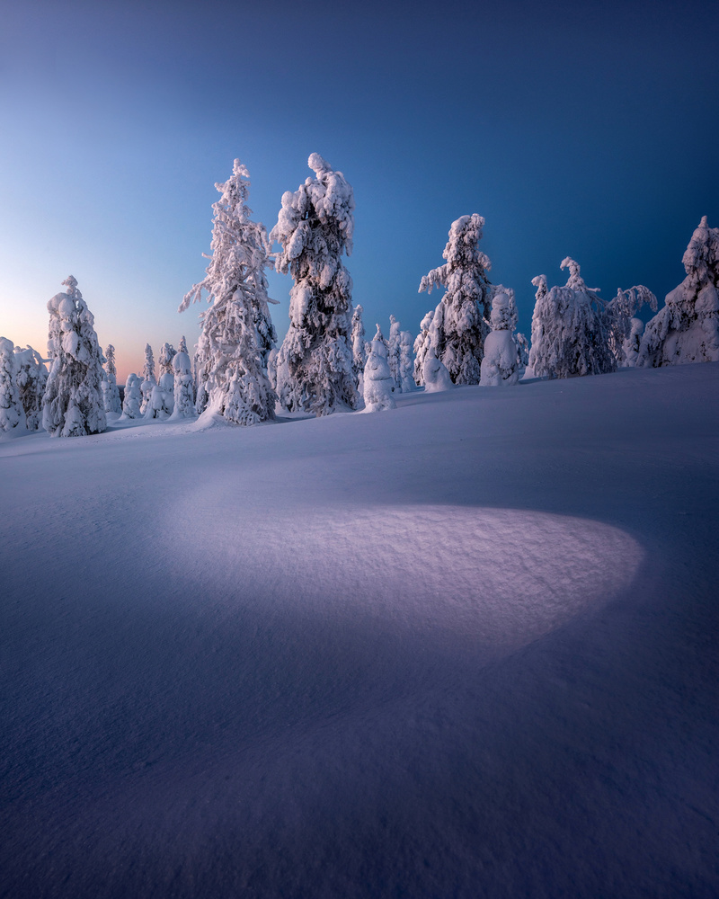 Untouched Snow by Philip Slotte
