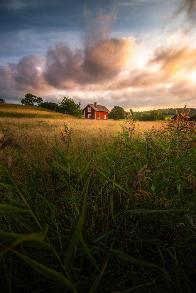 Swedish countryside by Philip Slotte