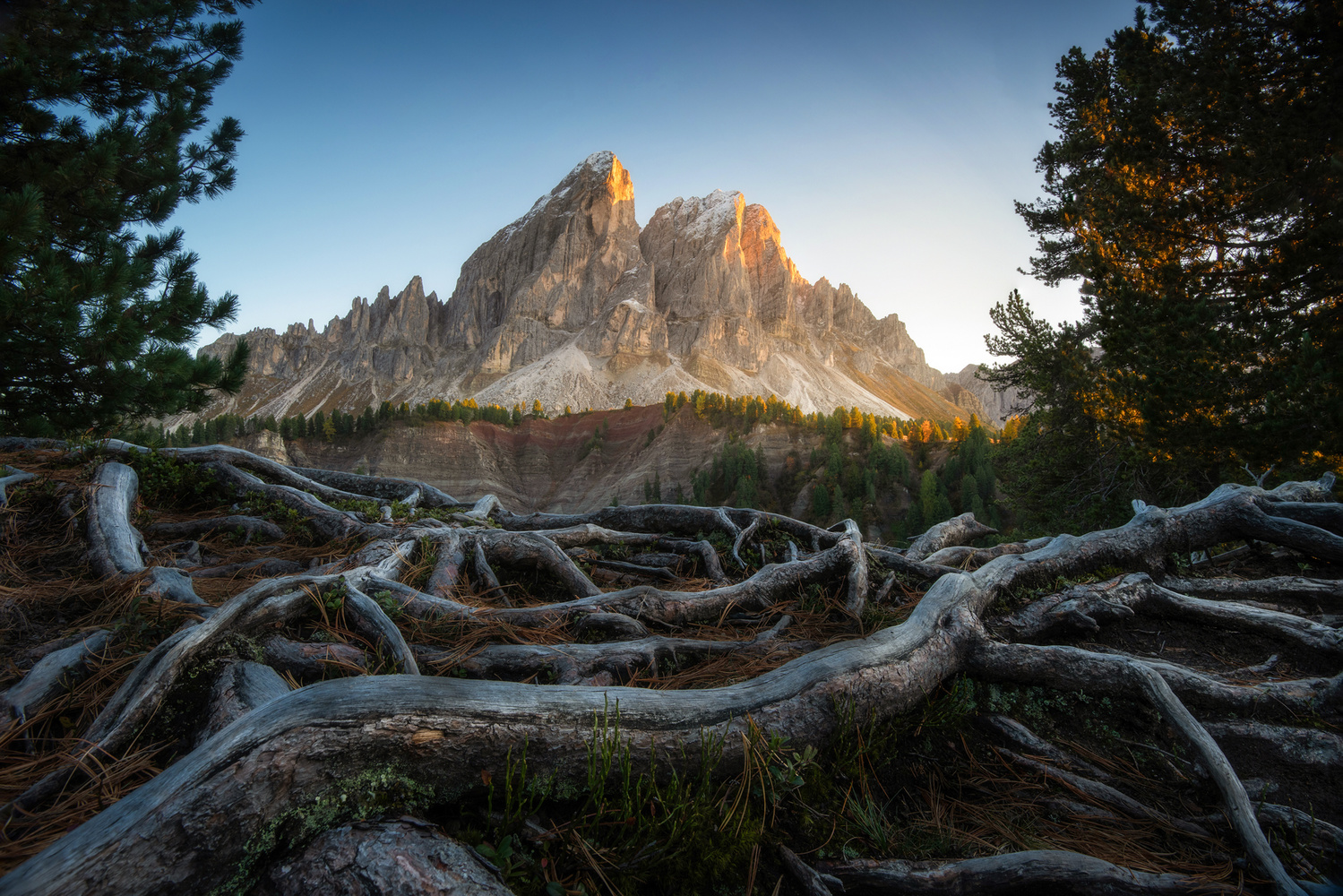 The Roots of the Dolomites by Philip Slotte