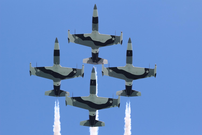 L-39 Albatros by Oliver Kmia