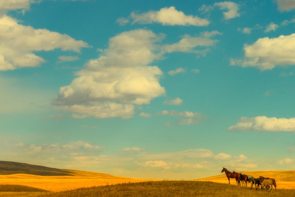 Another Era in Montana by John Zacharyczuk