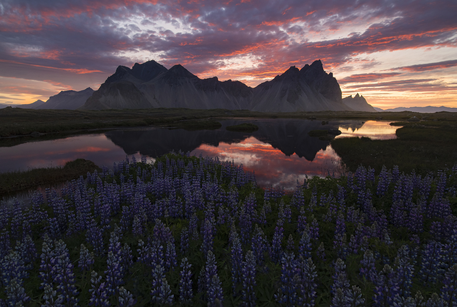 The Midnight Sun by Micah Roemmling