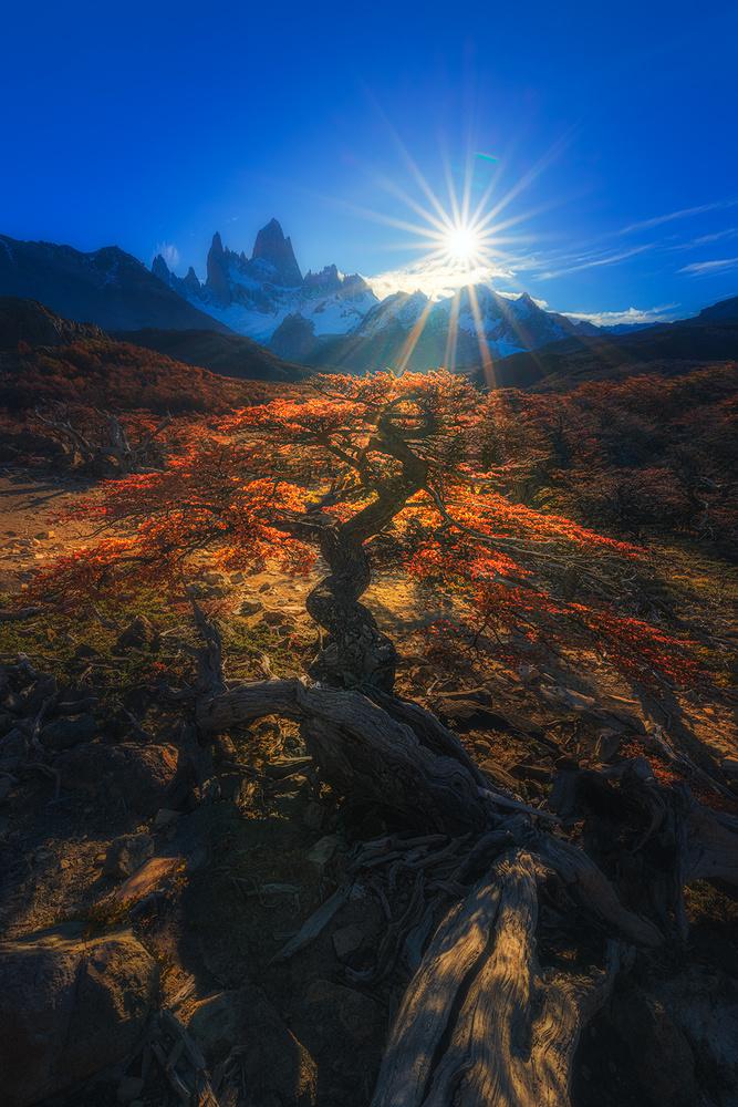 [ ... sun rays ] by Raymond Hoffmann