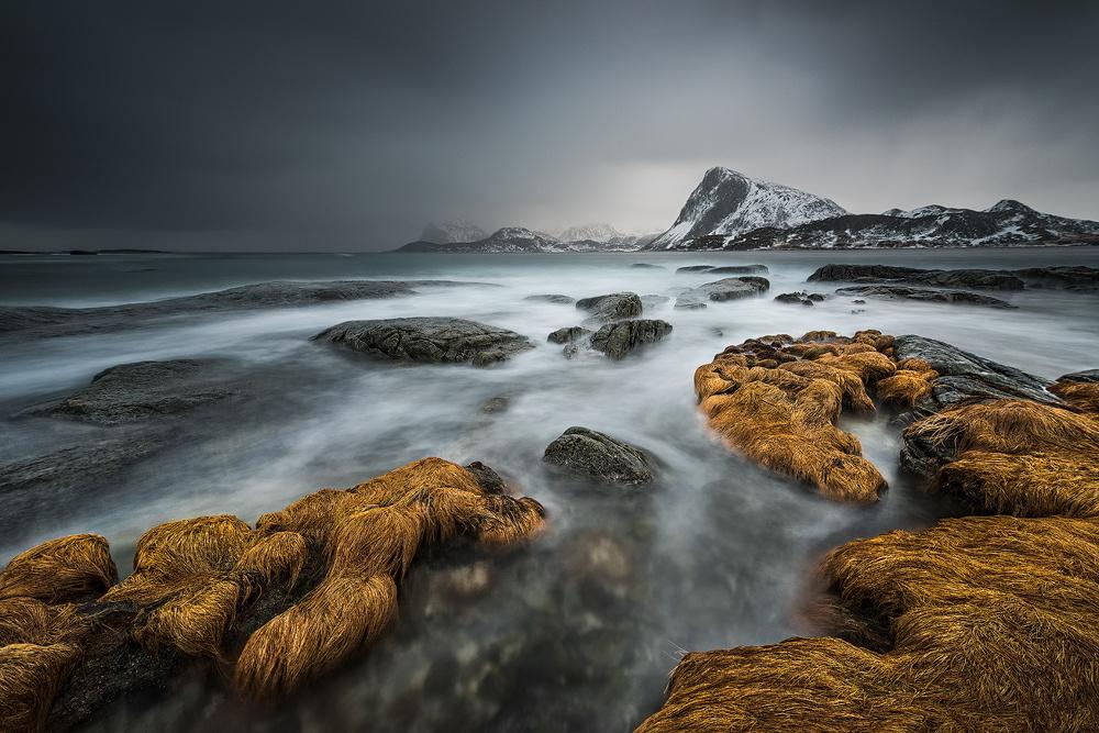 [ … stormy ] by Raymond Hoffmann