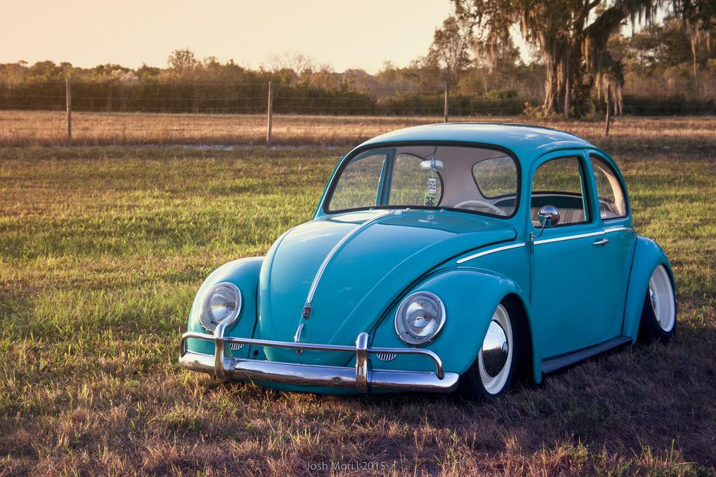 Tony's Beetle by Joshua Mori