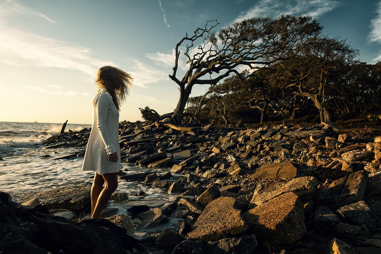 driftwood beach by Robert Wagner