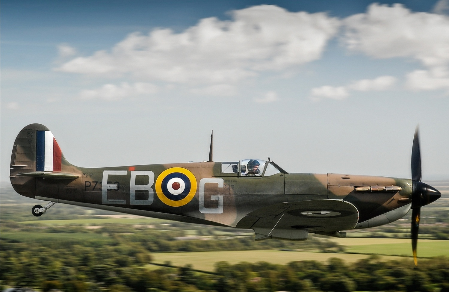 Baby Spitfire by Graham Taylor