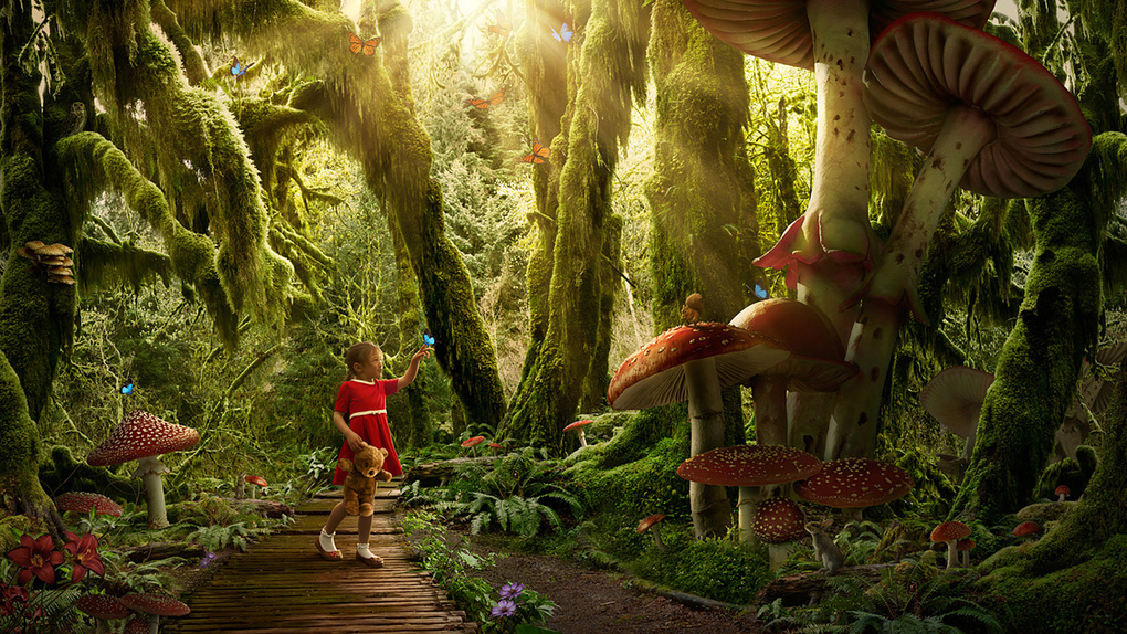 Dreams - In the Enchanted Forest by Joao Britto