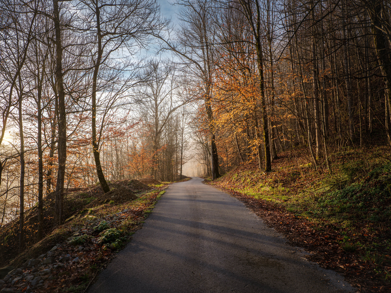 Early Morning Road by Korey Napier