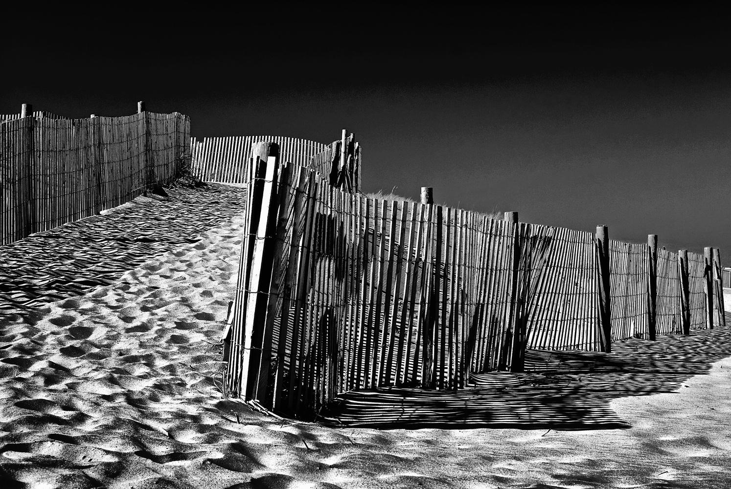 Dune fence, Delmarva seashore. by Bill Jonscher