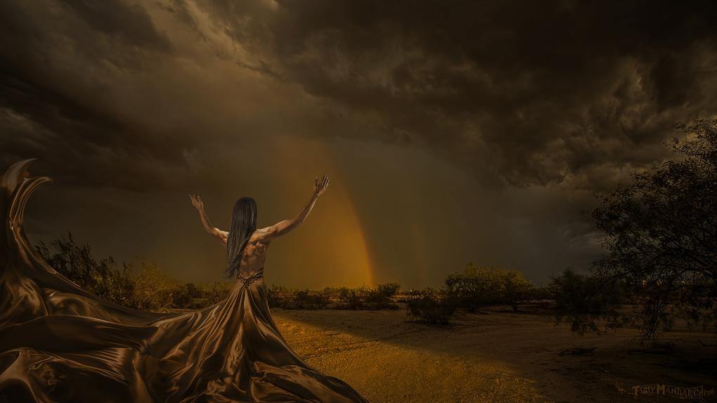 Storm Chaser by Tony Mandarich