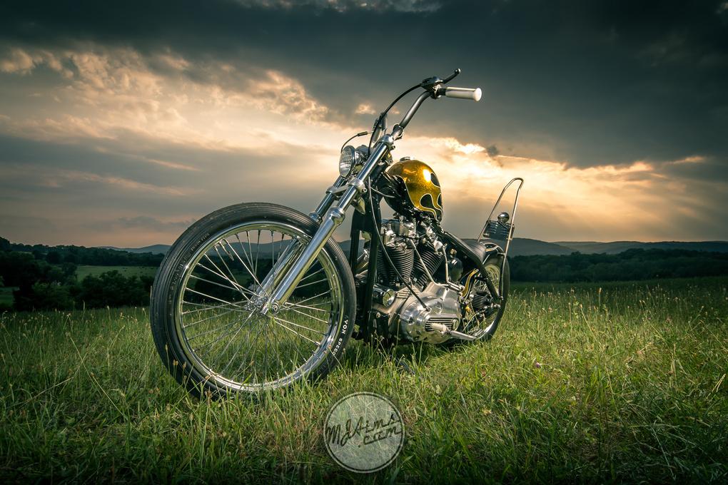 Ironhead by Matthew Aims