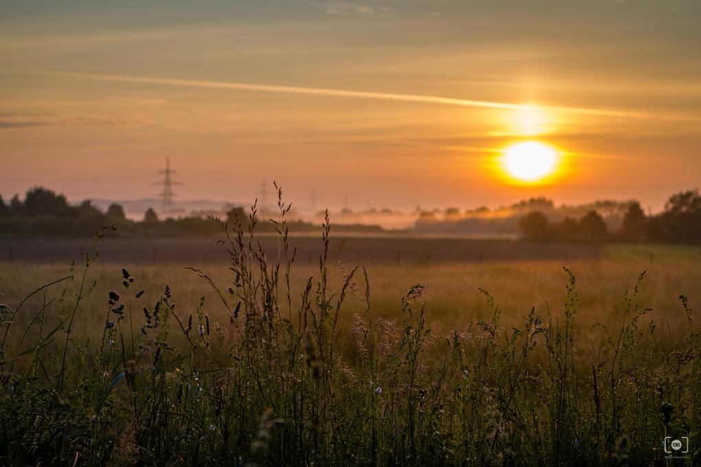 Good morning! by Dalibor Bauernfrajnd