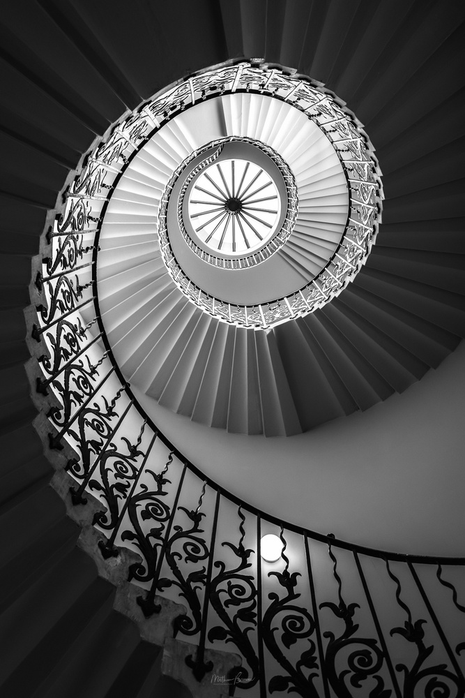 Tulip Stairs by Mathew Browne
