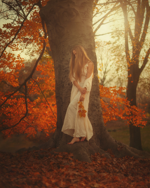 Forest Fairy  by TJ Drysdale