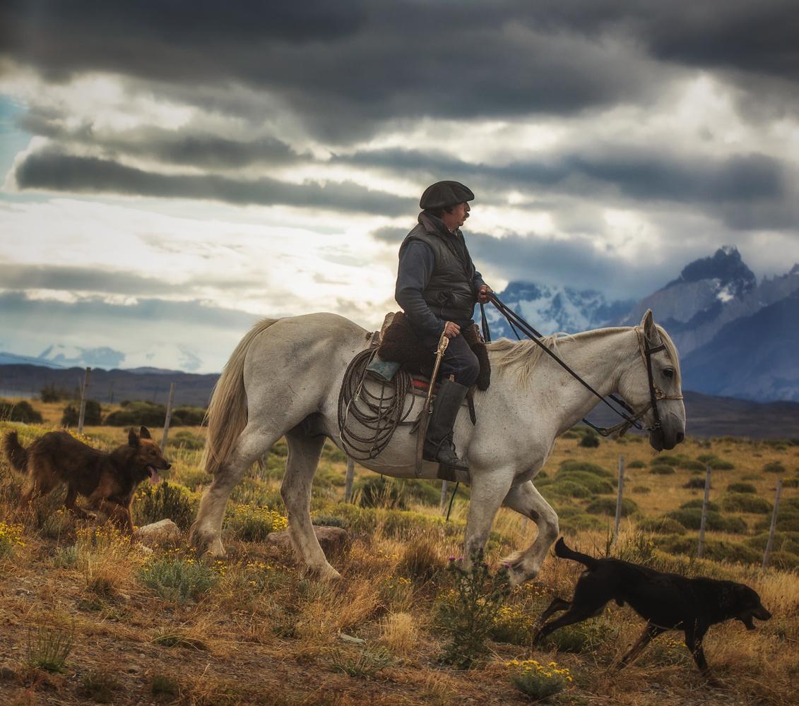 Chilean shepherd by Marcin Pietraszko