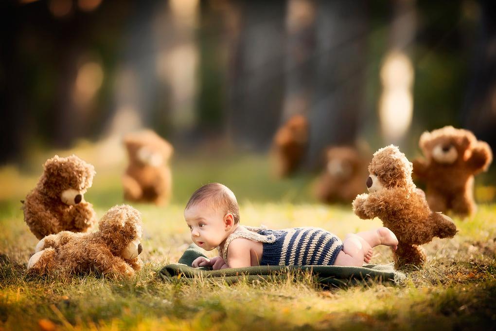 Teddy bear picnic by Jordan Pinder