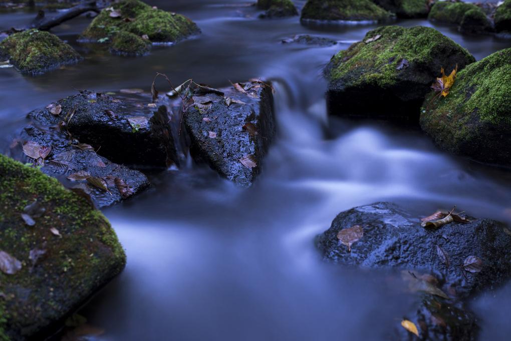 Flow by Freddie Lyxell