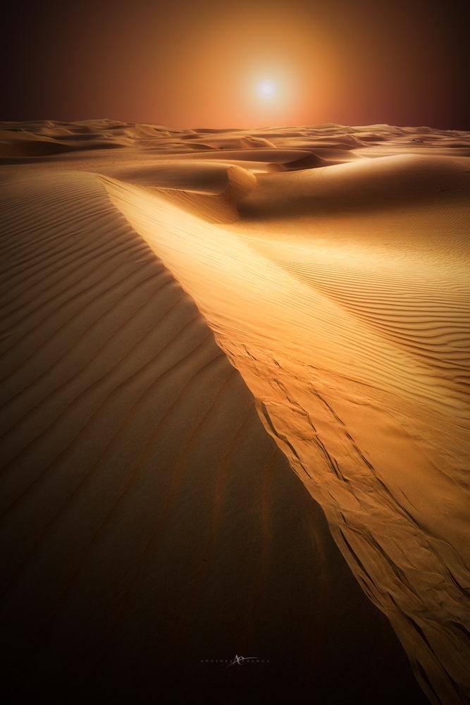 Dawn to Dark by Anushka Eranga