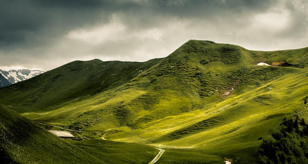 Green Land by Christin Necker