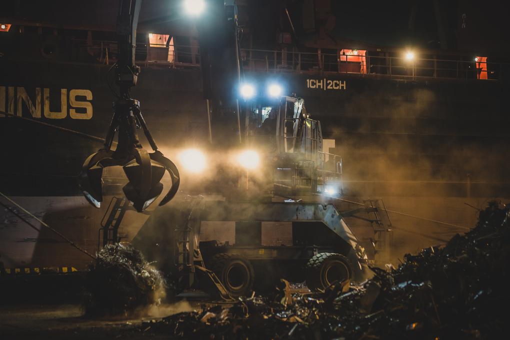Terminator by Janis Petranis