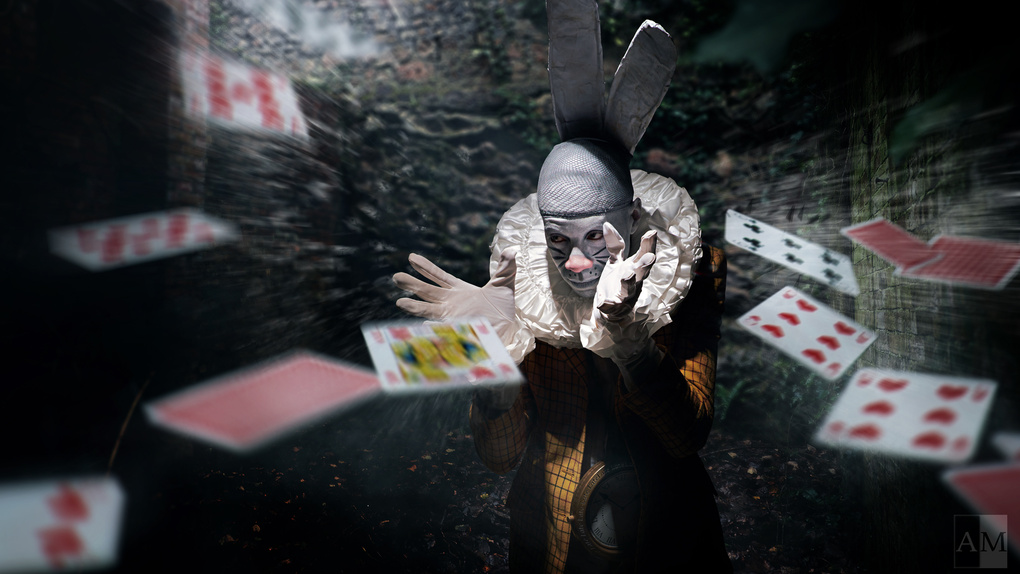 Follow the White Rabbit by Andy May