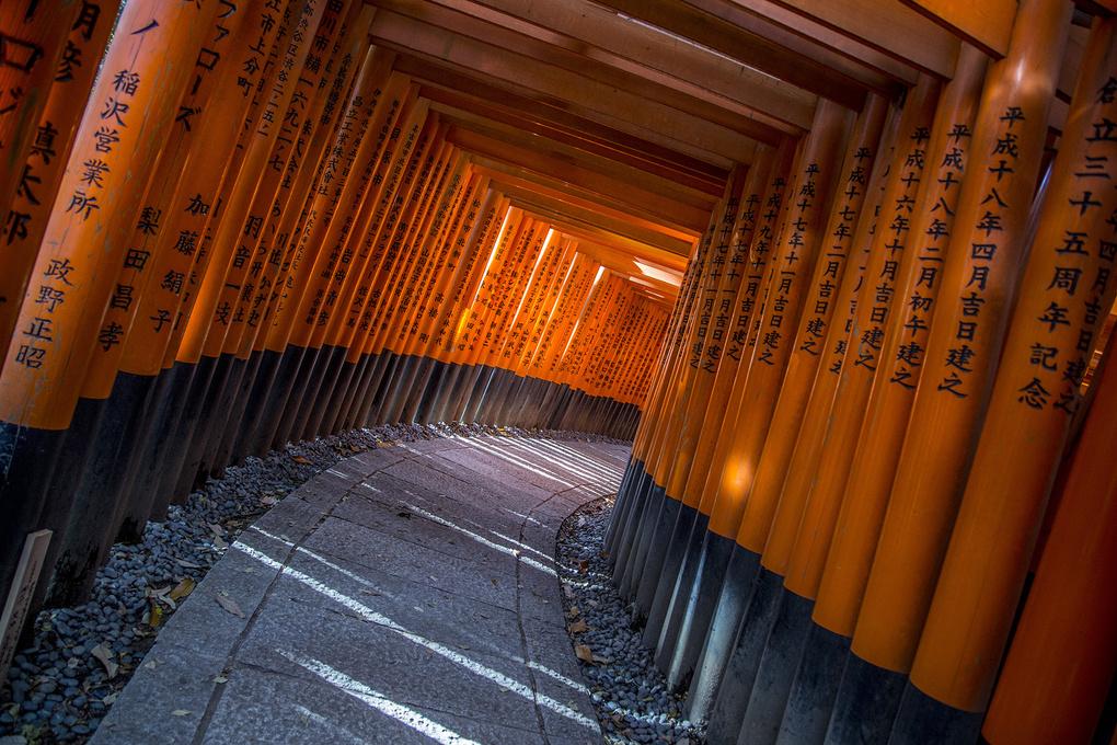 Unending Tunnels by Edward Boe