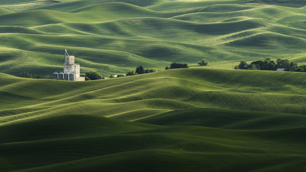 The Rolling Fields of Palouse by H M