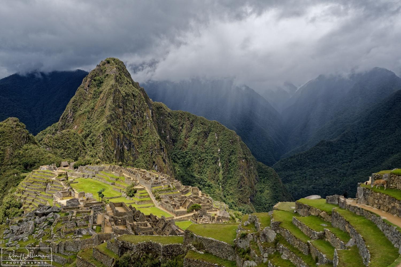 Machu Picchu by Ron Williams
