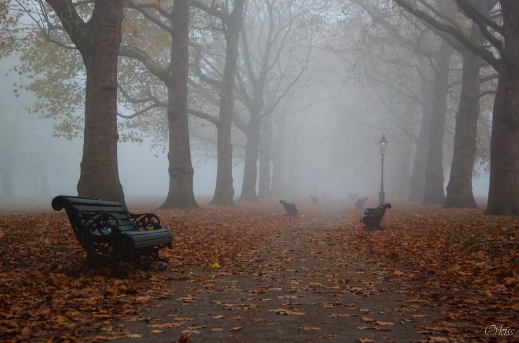 Foggy London by Oksana Kachkan