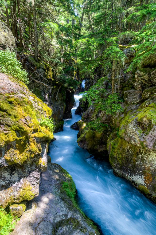 Avalanche creek by SEAN SHEPHERD