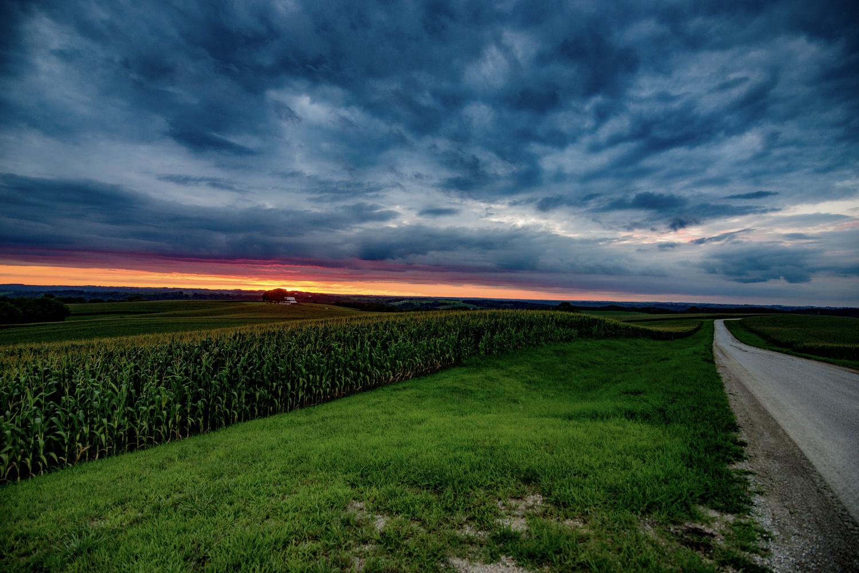 Country Delight by Matt Schrupp