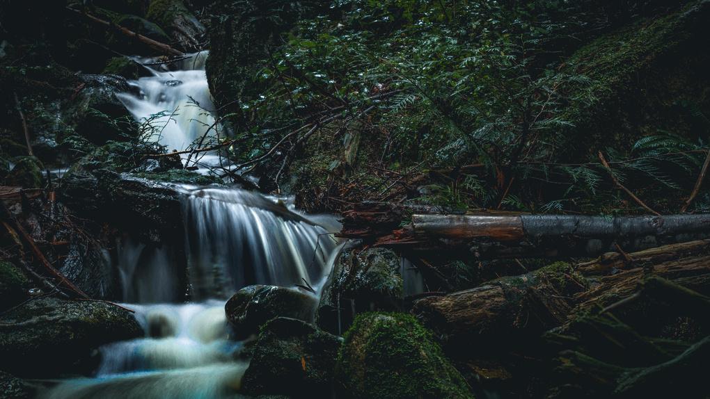 Winter Creek by Nick Tingren