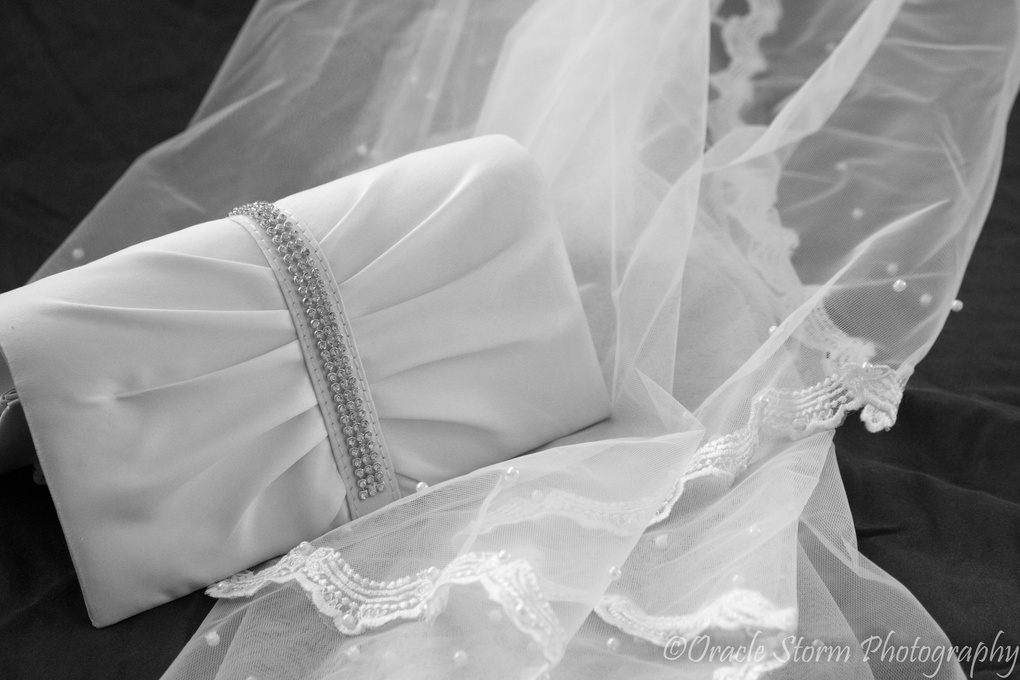 Bag and Veil by Kimberly Weber