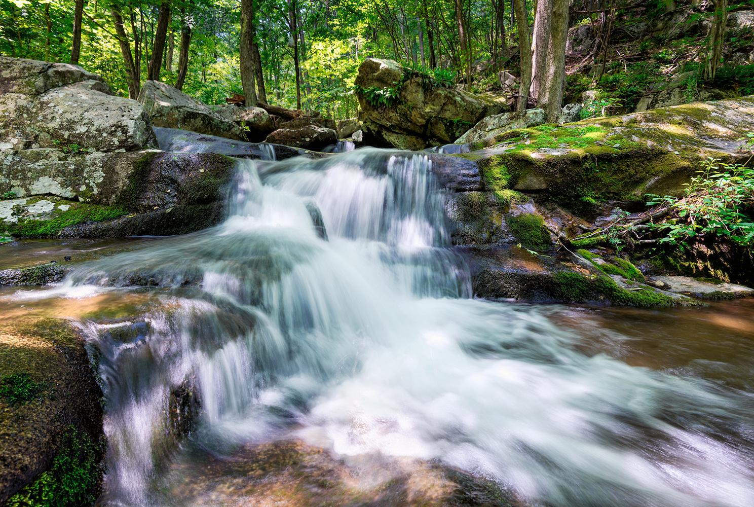 Hogchamp Branch Waterfall, Shenandoah National Park by Daniel McCloud